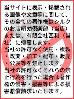 当サイトに表示・掲載される画像や文章等に関してそのすべての著作権は有限会社西和(当社)に帰属します。